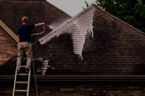 auburn opelika alabama roof washing