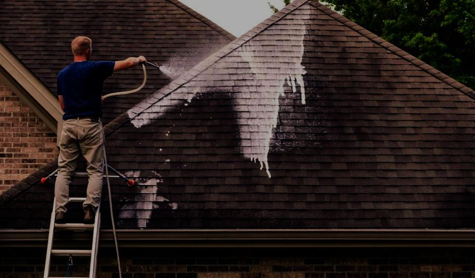auburn opelika alabama roof washing