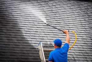 Roof Cleaning Washing Shampoo Auburn Alabama