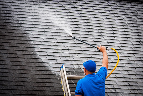 Roof Cleaning Washing Shampoo Auburn Alabama
