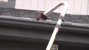 the best gutter cleaning company in auburn alabama