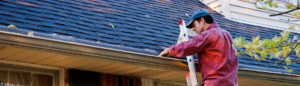 gutter cleaning local auburn alabama company business