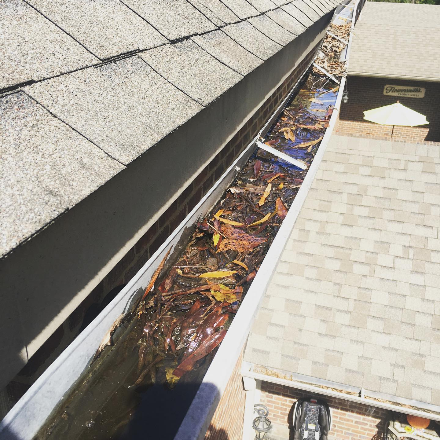 local small business that cleans gutters