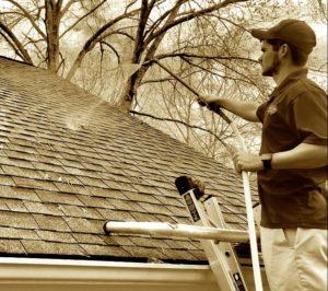 roof cleaning in auburn alabama opelika