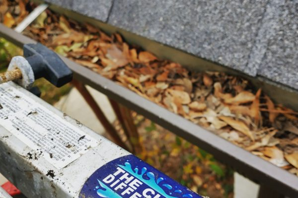 The Best Gutter Cleaning Experience in Auburn/Opelika, AL